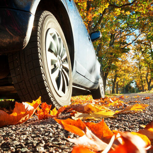 Close up view of the side of a vehicle on a road with leaves falling.